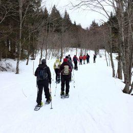 Schneeschuhwanderung zum Rohrauerhaus