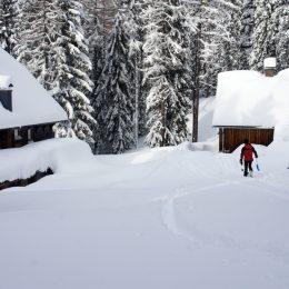 tief verschneites Rohrauerhaus