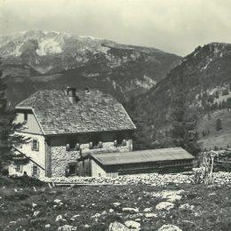 Jahr 1929