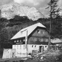 Jahr 1965